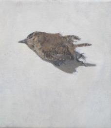 Wren, oil on canvas, mounted on panel,15 x 18 cm, 2014