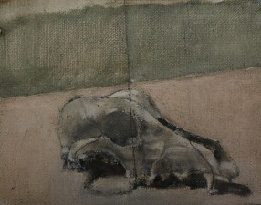 Fox Skull, 12 x 15cm, oil on linen