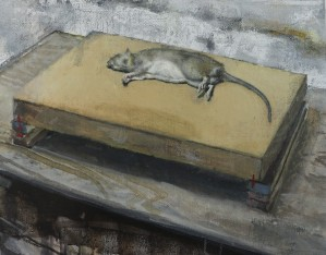 Rat, oil on canvas, 33 x 42cm