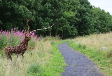 Willow Stag at Forest walk