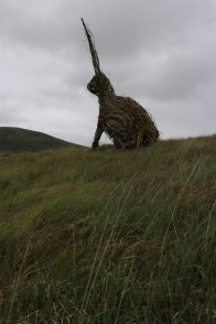 Installation @ Wild Nephin, Ballycroy National Park Visitor Centre