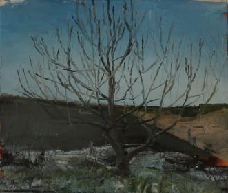Winter garden, oil on canvas 25 x 30 cm 2019